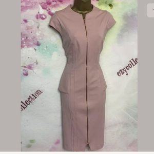 BNWT Ted Baker Nude Pink Body Con Dress size TB 4